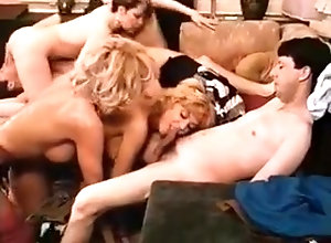 Hairy,Stockings,Swingers,Hardcore Hardcore Inspection