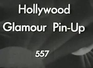 Lingerie,Nylon,Glamour,hollywood Hollywood Glamour...