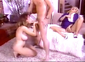 Big Boobs,American,Classic,Vintage Christy Canyon -...