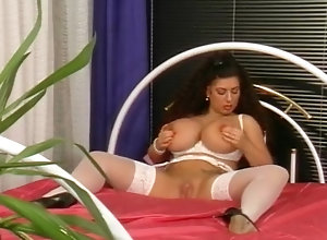 Threesome,Big Boobs,Stockings,Sex Toys,Andreas Westphal,Gina Colany,Ao Riesen Lollis